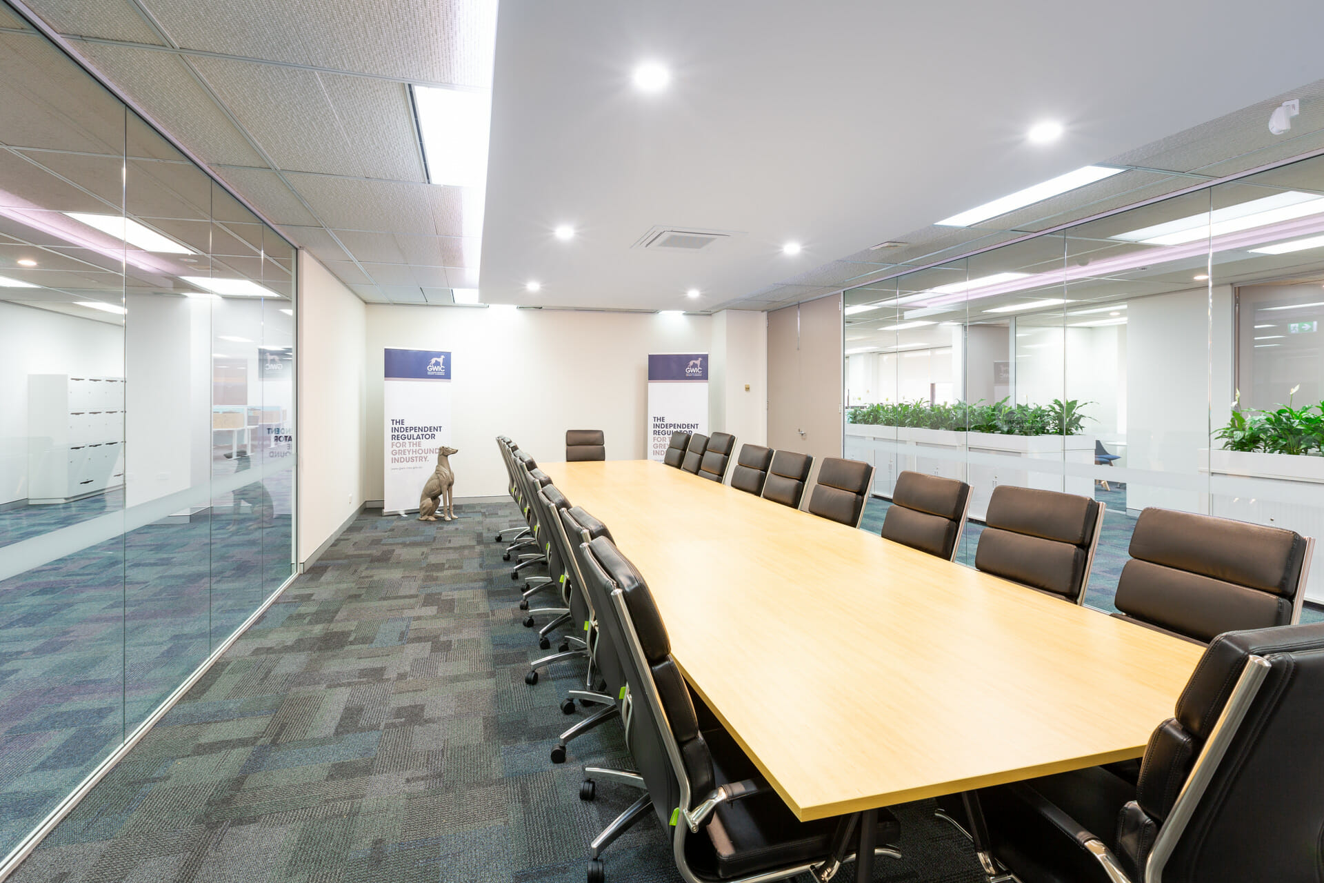 a government fitout project for Greyhound Welfare and Integrity Commission